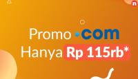 Netplasa Logo promo domain .COM Qwords